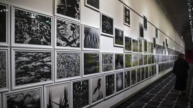 photo de l'expo
